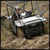 <b>Buggy Section</b>